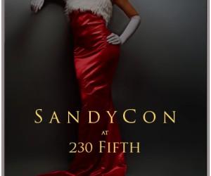 sandycon12-14-12