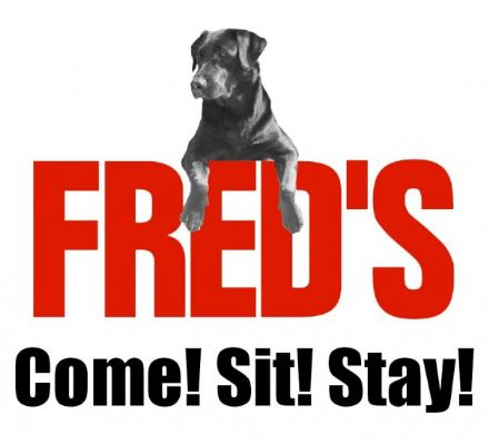 freds-sit-stay