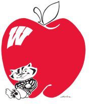 bigapplebadgers