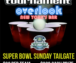 overlook_superbowl-xlviii