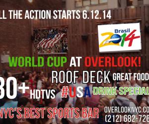 overlook_worldcup2014