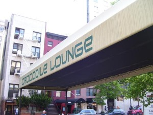 crocodilelounge_awning
