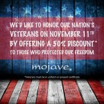 veteransday_mojave2014