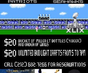 superbowl49_overlook