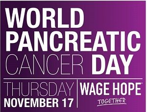 world-pancreatic-cancer-day300