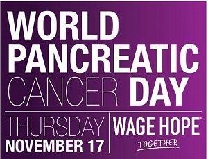 world-pancreatic-cancer-day300