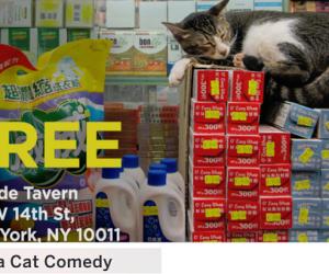offside_bodega-cat-comedy