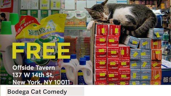 Bodega Cat Comedy