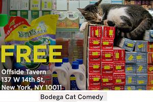 offside_bodega-cat-comedy-300