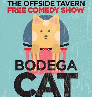 bodega-cat_2018-9pm-300
