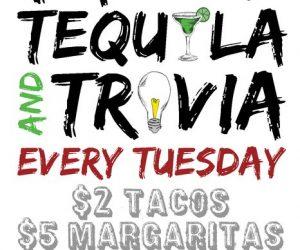 calicojacks_tacos-tequila-trivia